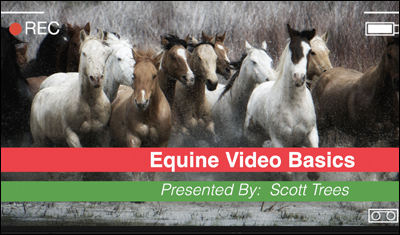The Basics of Equine Videography